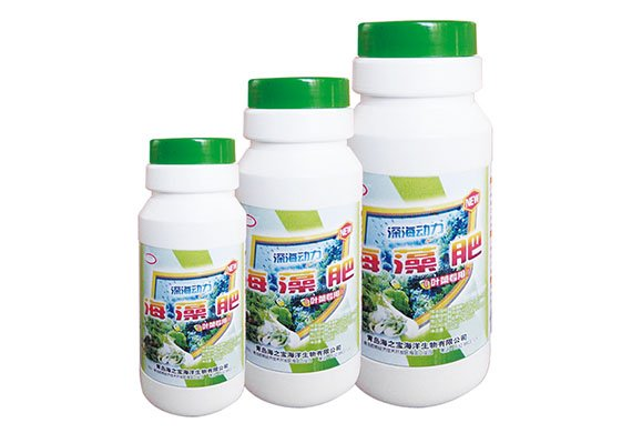 Seaweed foliar fertilizer